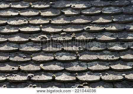 The roof cover is like a scarf of fish. There is a patina on the roof covering. The age of the roof is also proven by small bushes of moss. There is a noticeable play of shadows on the roof and moss.