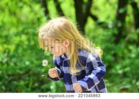 Kid with long blond hair in plaid shirt outdoor. Child blow dandelion in spring or summer park. Childhood, future, growth concept. Boy with flower on idyllic sunny day. Freedom, activity, discovery.