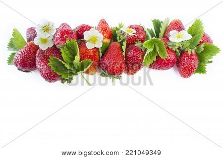 Ripe strawberries isolated on a white. Strawberries at border of image with copy space for text. Top view. Various fresh summer fruits on white background. Strawberries with leaves and flowers.
