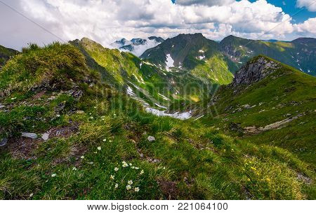 gorgeous summer landscape in mountains. grassy slope with flowers and rocky cliffs with some snow. beautiful cloudy sky