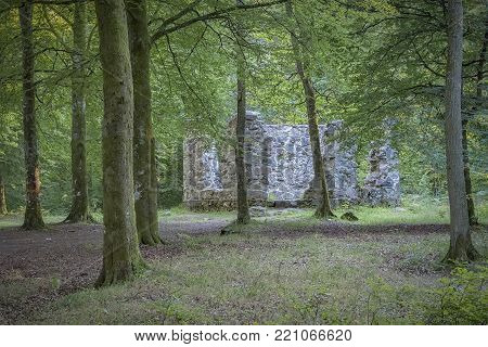 A ruined library belonging to the Late medieval castle of Hovdala, Sweden.