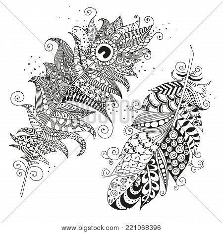 Two hand drawn zentangle feather on white background. Coloring for adults. Vintage tribal feather. Isolated vector illustration, design element. Black and white.