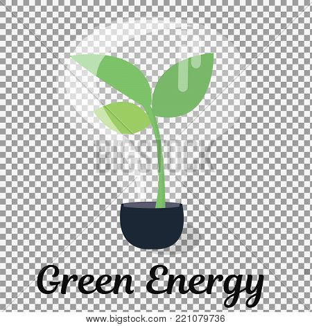 plant tree growing seedling in lamp vector icon symbol in flat isometric design on transparent background. -stock vector