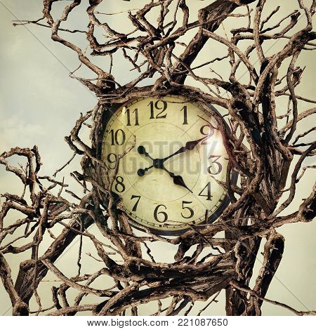 Beautiful surreal image representing a clock entwined by many branches
