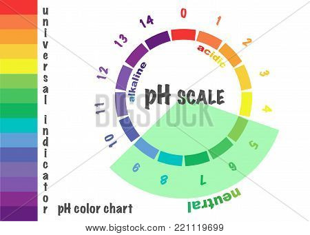 scale of ph value for acid and alkaline solutions, infographic acid-base balance. scale for chemical analysis acid base. vector illustration isolated or white background