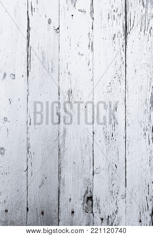 Retro wooden wall whitewash lime, modern style, weathered cracky messy dust wooden backdrop, nails and knots, vintage background for design
