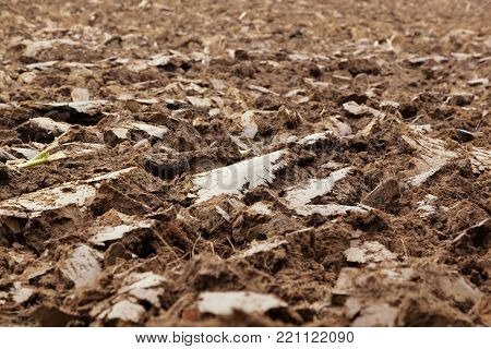 Brown mud in a field that has been plowed. Showing slabs of mud and plant roots with selective focus and space for text.