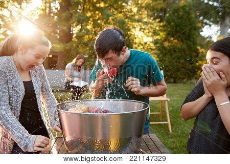Friends watch teenage boy apple bobbing at garden party poster
