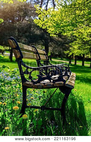 Park bench in lush parkland.
