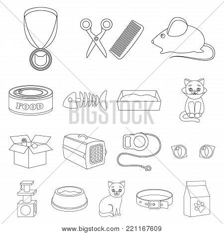 An animal cat outline icons in set collection for design. Caring for a cat vector symbol stock  illustration.