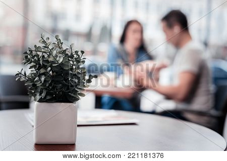 Natural decoration. Silhouette of friendly colleagues that sitting on the background and using their devises while drinking coffee