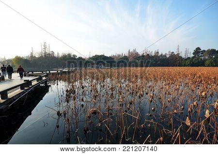 Winter On West Lake, Hangzhou.