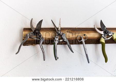 organisation, handmade, comfort concept. on the white wall of the workroom there is a piece of wood that is partially treated, it has few nails for different supplies