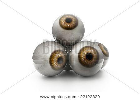 menschliche Auge