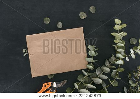 top view of blank paper envelope with garden shears and eucalyptus branches over black background