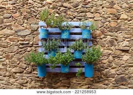Beautifuful flowerpot recycling on a stone wall