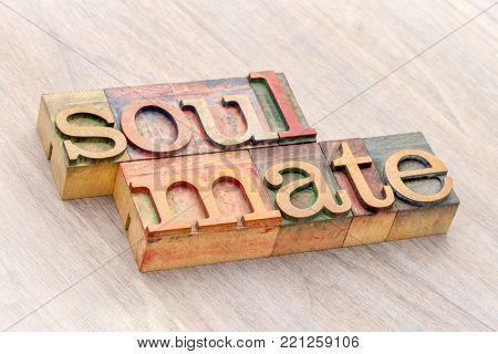 soulmate word abstract in letterpress wood type printing blocks