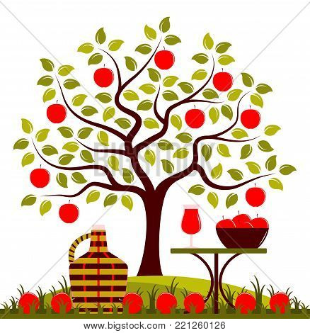 vector apple tree, demijohn and table with apple drink isolated on white background