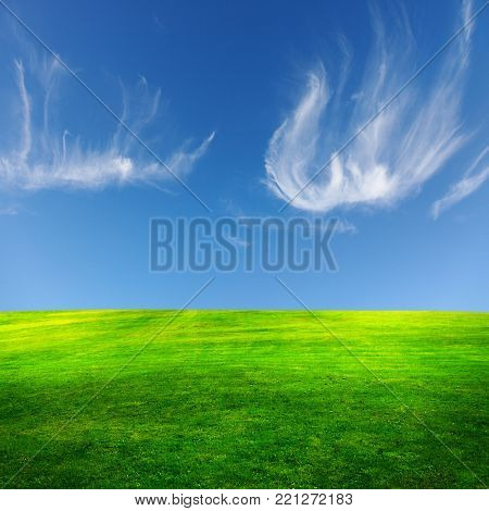 Green field and beautiful sky,great as a background