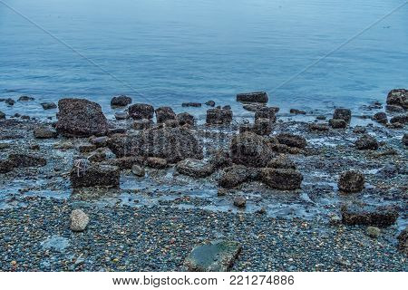 A view of shoreline rocks with a low tide in West Seattle, Washington.