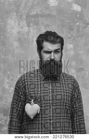 Frown bearded man, caucasian hipster, with long beard and moustache with rosy textile heart, love gift for valentines day, on plaid shirt stands on beige grunge wall background