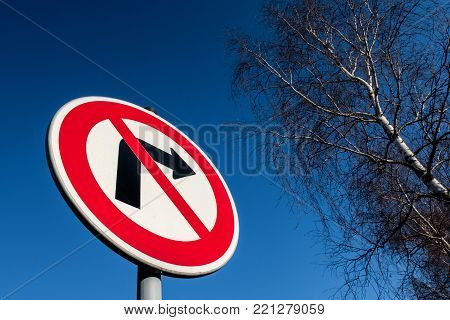 The traffic sign forbidding to turn right against blue sky with birch in a background