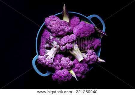 Blue Bowl Full of Fresh Raw Purple Sprouts of Cauliflower with Leafs isolated on Black background. Top View