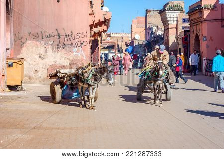 Donkey Carriage, Marrakech, Morocco
