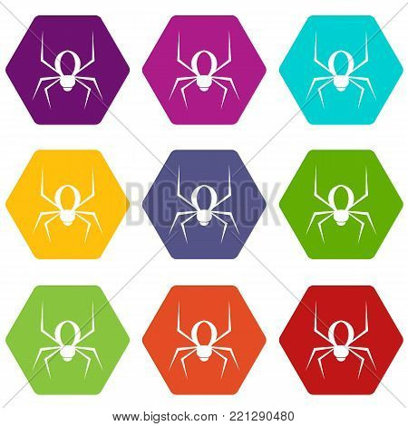Spider icon set many color hexahedron isolated on white vector illustration