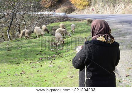 Masuleh, IRAN - December 22, 2017 elderly herder woman beside rural road. Gilan Province