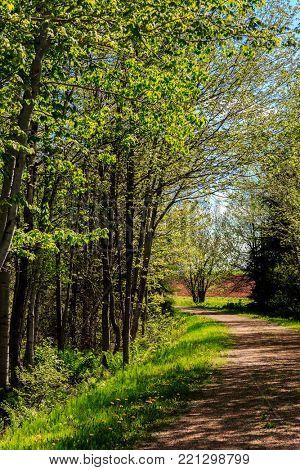 Springtime on the Confederation Trail in rural Prince Edward Island, Canada.
