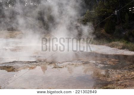 Steaming hot geothermal pool between the upper and lower loops of the Mammoth Hot Springs area in Yellowstone National Park