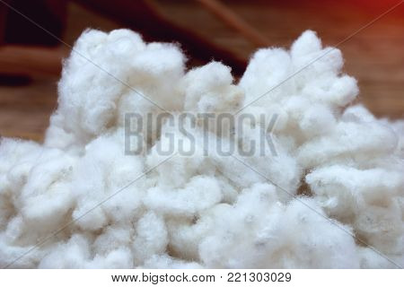 white cotton used as textile fiber and thread for weaving