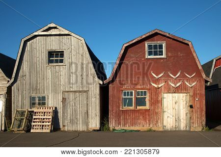 Two oysters barns in background  in Malpeque, Prince Edward island also called PEI