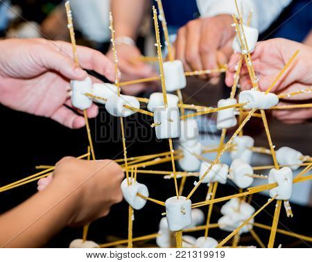 Team building activities, use marshmallow and wood for house design