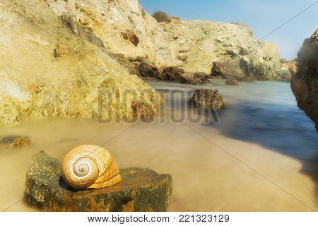 Lolantonis rocky beach at Paros island in Greece with a seashell at the foreground.