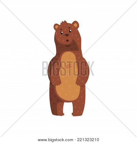 Cute bear with surprised muzzle expression. Cartoon character of wild animal with brown fur, small rounded ears and shiny eyes. Isolated flat vector design for book cover, print, sticker or poster.