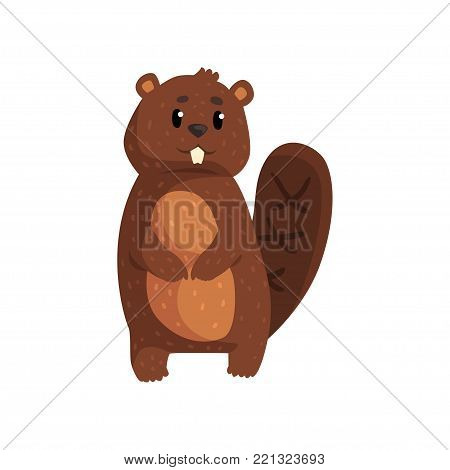 Cute brown beaver standing isolated on white background. Cartoon character of forest rodent with big teeth, shaped tail, little ears and shiny eyes. Concept of wild animal. Flat vector illustration.