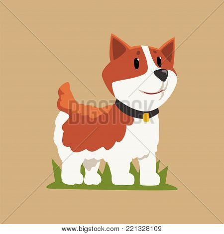 Smiling welsh corgi standing on green grass. Cartoon dog character with black collar. Human's best friend. Domestic animal in flat style. Isolated vector design for sticker, print or children book.