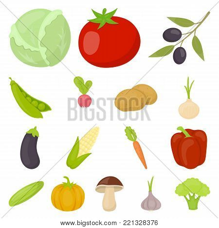 Different kinds of vegetables cartoon icons in set collection for design. Vegetables and vitamins vector symbol stock  illustration.