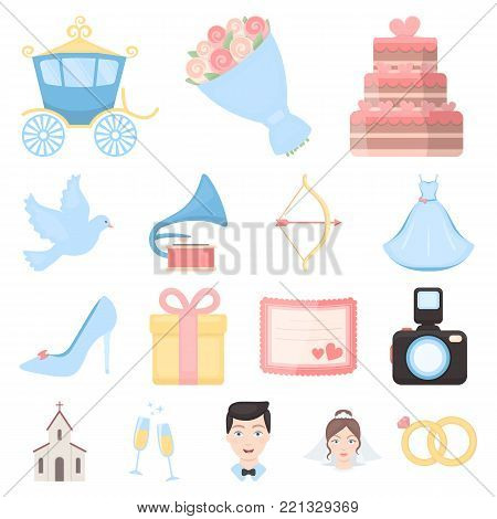 Wedding and Attributes cartoon icons in set collection for design.Newlyweds and Accessories vector symbol stock  illustration.