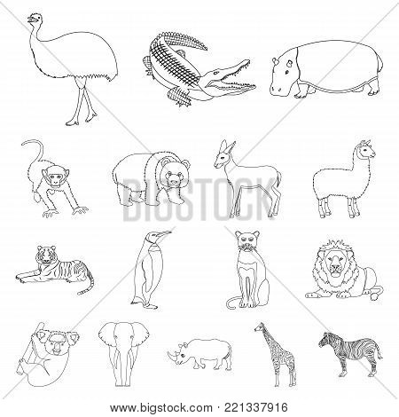 Different animals outline icons in set collection for design. Bird, predator and herbivore vector symbol stock  illustration.