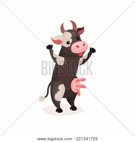 Funny spotted cow, milk cow standing on two legs cartoon vector Illustration on a white background