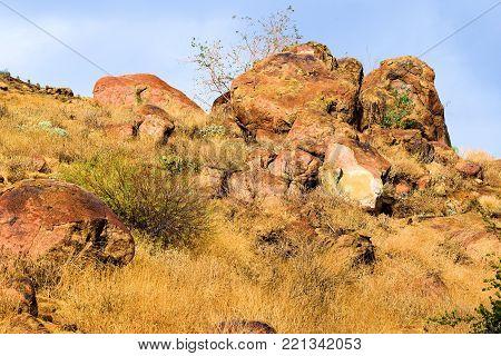 Boulder rocks surrounding an arid field of chaparral shrubs taken in Mt Rubidoux, CA