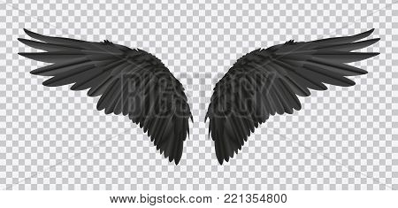 Vector pair of black realistic wings on transparent background