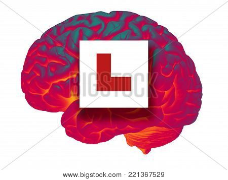 GLOWING HUMAN BRAIN ON WHITE BACKGROUND WITH RED LEARNER L PLATE SIGN
