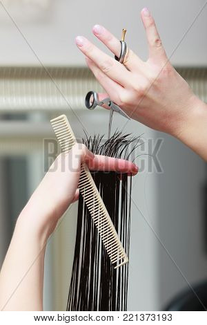 Close-up of hairdresser hands. Hairstylist with comb and scissors cutting hair of female client. Woman in hairdressing beauty salon. poster