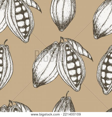 Cocoa hand drawn seamless pattern. Vector illustration EPS10