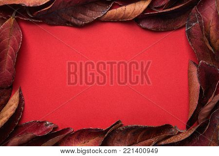 Frame from Dark Red Leaves with Empty Copy Space for Text. Rich Vibrant Crimson Color. Thanksgiving Fall Fashion Valentine Concept. Sales Banner Poster Greeting Card Template. Unique Creative Image