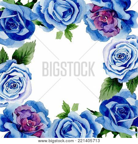Wildflower blue rose flower frame in a watercolor style. Full name of the plant: rose, hulthemia, rosa. Aquarelle wild flower for background, texture, wrapper pattern, frame or border.